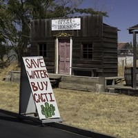 Save Water Buy Cacti, CA