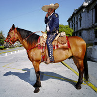 Traditional Police Constable, Mexico City
